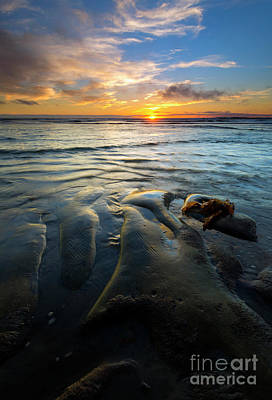 Sundown Photograph - On The Horizon by Mike  Dawson