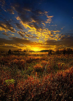 Fall Leaves Photograph - Only Time by Phil Koch