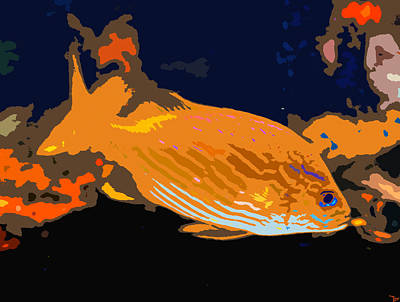 Undersea Digital Art - Orange Fish by David Lee Thompson