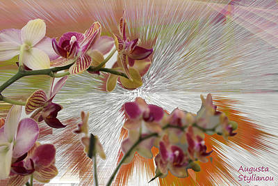 Silver Turquoise Digital Art - Orchid Flower by Augusta Stylianou