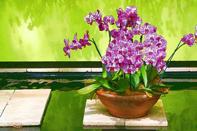 Photograph - Orchid Still Life by Allen Beatty