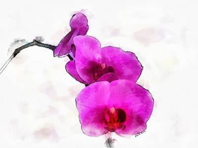 Painting - Orchids by Charlie Roman