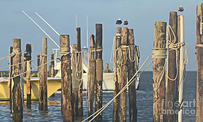 Post Photograph - Oregon Inlet Fishing Center by Cathy Lindsey