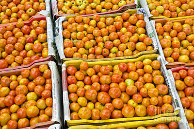 Tomato Photograph - Organic Tomatoes Or Solanum Lycopersicum In Baskets by Image World