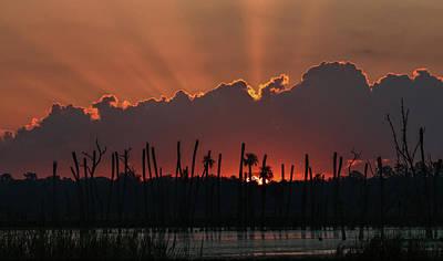 Photograph - Orlando Wetlands Sunrise by Dorothy Cunningham