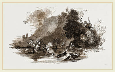 Otter Drawing - Otter Hunting by Litz Collection