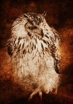 Owl Art Print by Svetlana Sewell