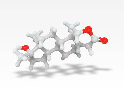 Oxandrolone Anabolic Steroid Molecule Art Print by Ramon Andrade 3dciencia
