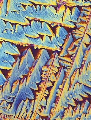 Oxytocin Hormone Crystals, Plm Art Print by Alfred Pasieka