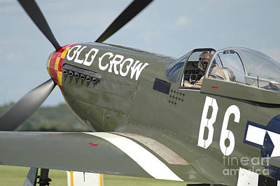 P-51d Mustang In United States Army Air Art Print