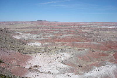 Photograph - Painted Desert by Susan Woodward