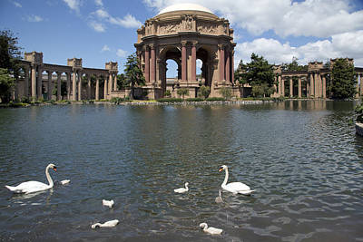 Photograph - Palace Of Fine Arts In San Francisco by Carol M Highsmith