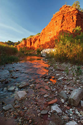 Ditto Photograph - Palo Duro Canyon State Park, Texas by Larry Ditto