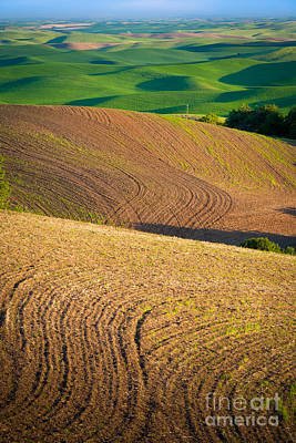 Spring Scenery Photograph - Palouse Swirls by Inge Johnsson