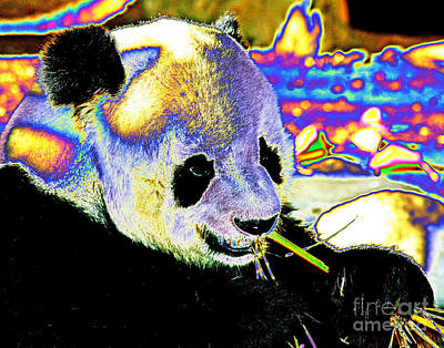 Photograph - Pandamonium by Larry Oskin