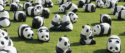Seoul Photograph - Paper Made Pandas From World Wildlife by Panoramic Images