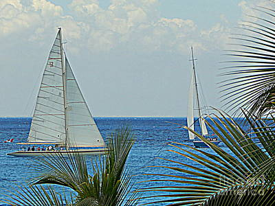 Photograph - Paradise Sails On The Ocean In Puerta Maya Cozumel Mexico by Michael Hoard