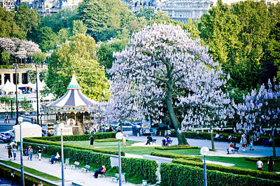 Paris The City Of Blossoming Chestnut Trees  Art Print