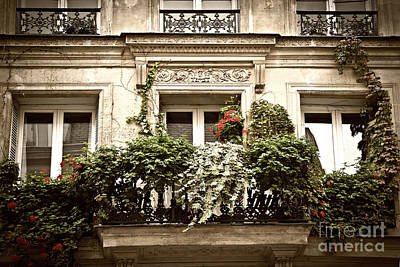 Sill Photograph - Paris Windows by Elena Elisseeva