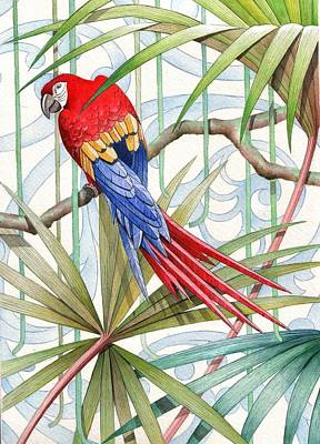 Wallpaper Drawing - Parrot, 2008 by Jenny Barnard