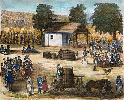 Winery Drawing - Party Of The Harvest Of The Grapes by English School