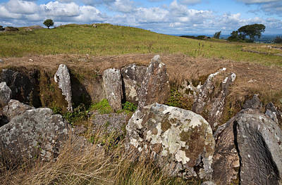 Farmscapes Photograph - Passage Grave,carbane West, Loughcrew by Panoramic Images
