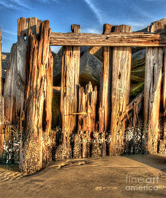 Sullivans Island Sc Photograph - Passage Of Time by Dale Powell