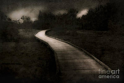 Wetlands Photograph - Path To The Unknown by Jorgo Photography - Wall Art Gallery
