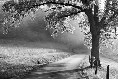 Cades Cove Photograph - Path To The Woods by Andrew Soundarajan