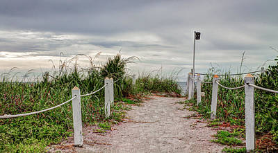 Robert Bellomy Royalty-Free and Rights-Managed Images - Pathway to the Beach by Robert Bellomy