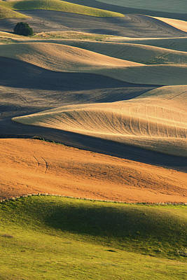 Patterns Of The Palouse Art Print by Latah Trail Foundation