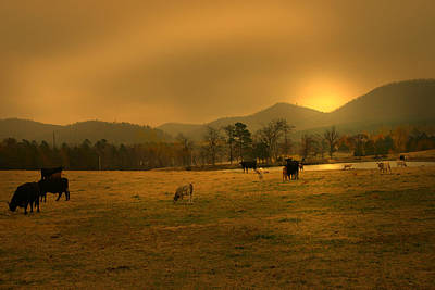 Arkansas Series Photograph - Peace In The Valley by Nina Fosdick