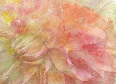 Digital Art - Peach Dahlia by Donna Walsh