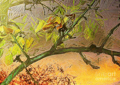 Pear Tree In The Sunset Art Print by Odon Czintos