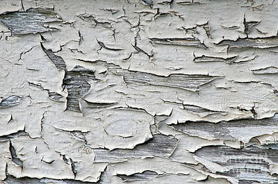 Photograph - Peeling Paint On Boat by Dan Friend