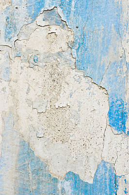Peeling Paint Art Print by Tom Gowanlock