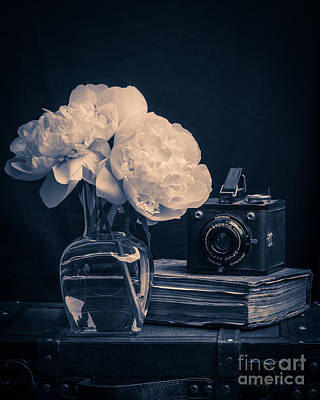 Photograph - Peony Still Life by Edward Fielding