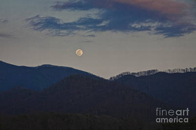 Photograph - Peregrien Moon by Ronald Lutz