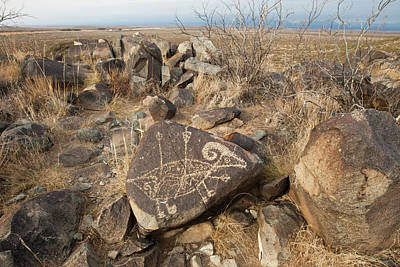 Bureau Land Management Photograph - Petroglyph At The Three Rivers by Larry Ditto