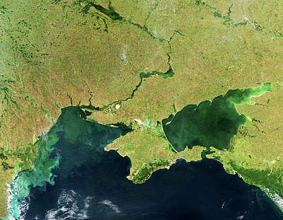 Dnieper Wall Art - Photograph - Phytoplankton Blooms In The Black Sea by Nasa/gsfc/science Photo Library