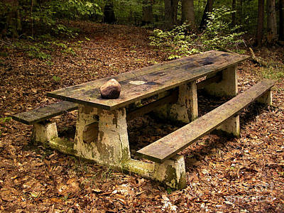 Photograph - Picnic Table At Chestnut Ridge Park by Tom Brickhouse