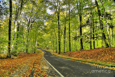 Pierce Stocking Scenic Drive In Fall Art Print