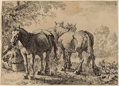1636 Drawing - Pieter Van Laer Dutch by Quint Lox