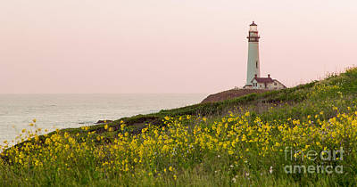 Photograph - Pigeon Point In Spring by Theresa Ramos-DuVon