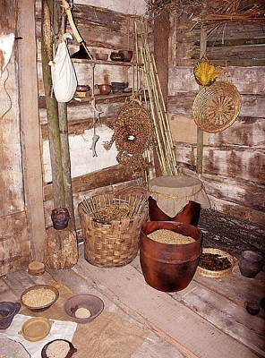 Paleobotanical Photograph - Pile Dwelling Interior by Sheila Terry