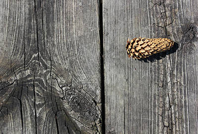 Photograph - Pine Cone And Old Wood 2 by Mary Bedy
