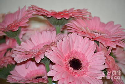 Photograph - Pink Gerbera Flowers by P S