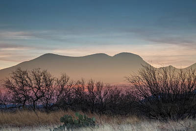 Pink In The Valley Art Print by Beverly Parks