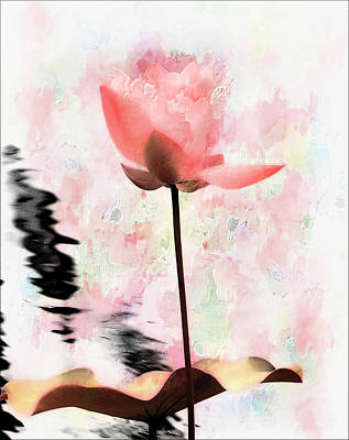 Digital Art - Pink Lotus by Carol Kinkead