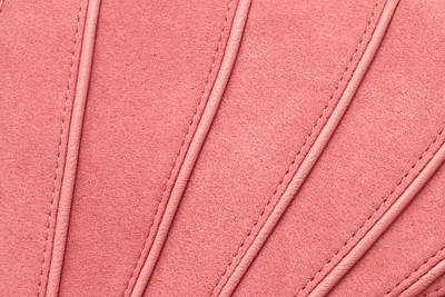 Suede Photograph - Pink Moleskin by Tom Gowanlock